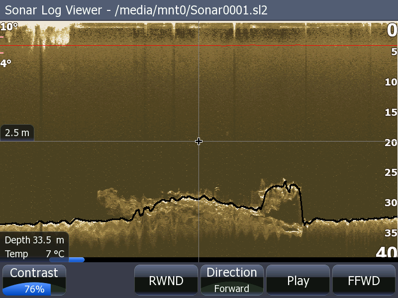 Lowrance StructureScan - Down Scan View