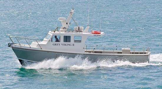 Grey Viking Brighton Charter Boat