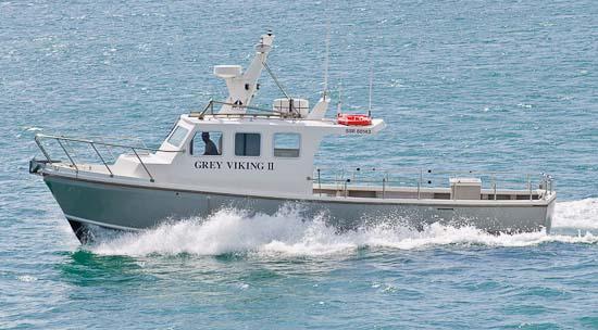Grey Viking Brighton Charter Boat