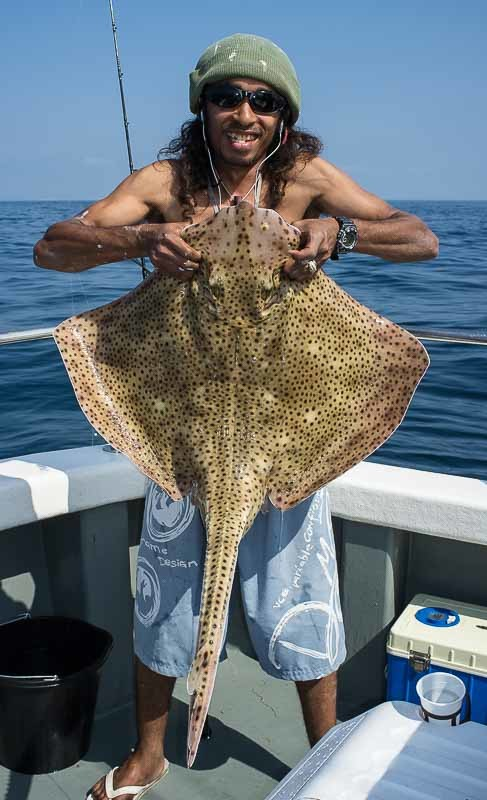 30lb Blonde Ray - Ground Fishing