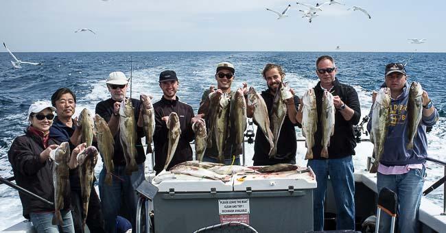 Brighton Sea Fishing Trips
