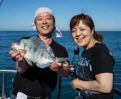 Kingmere Reef Fishing for Bream