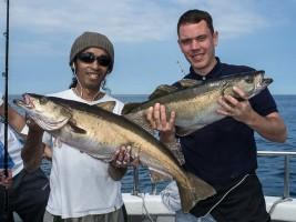 pollack fishing summer wrecks