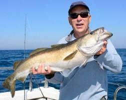 prime pollack fishing
