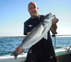 Wreck Fishing Bass